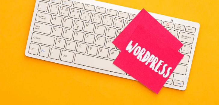 WordPress İle Neler Yapılabilir?